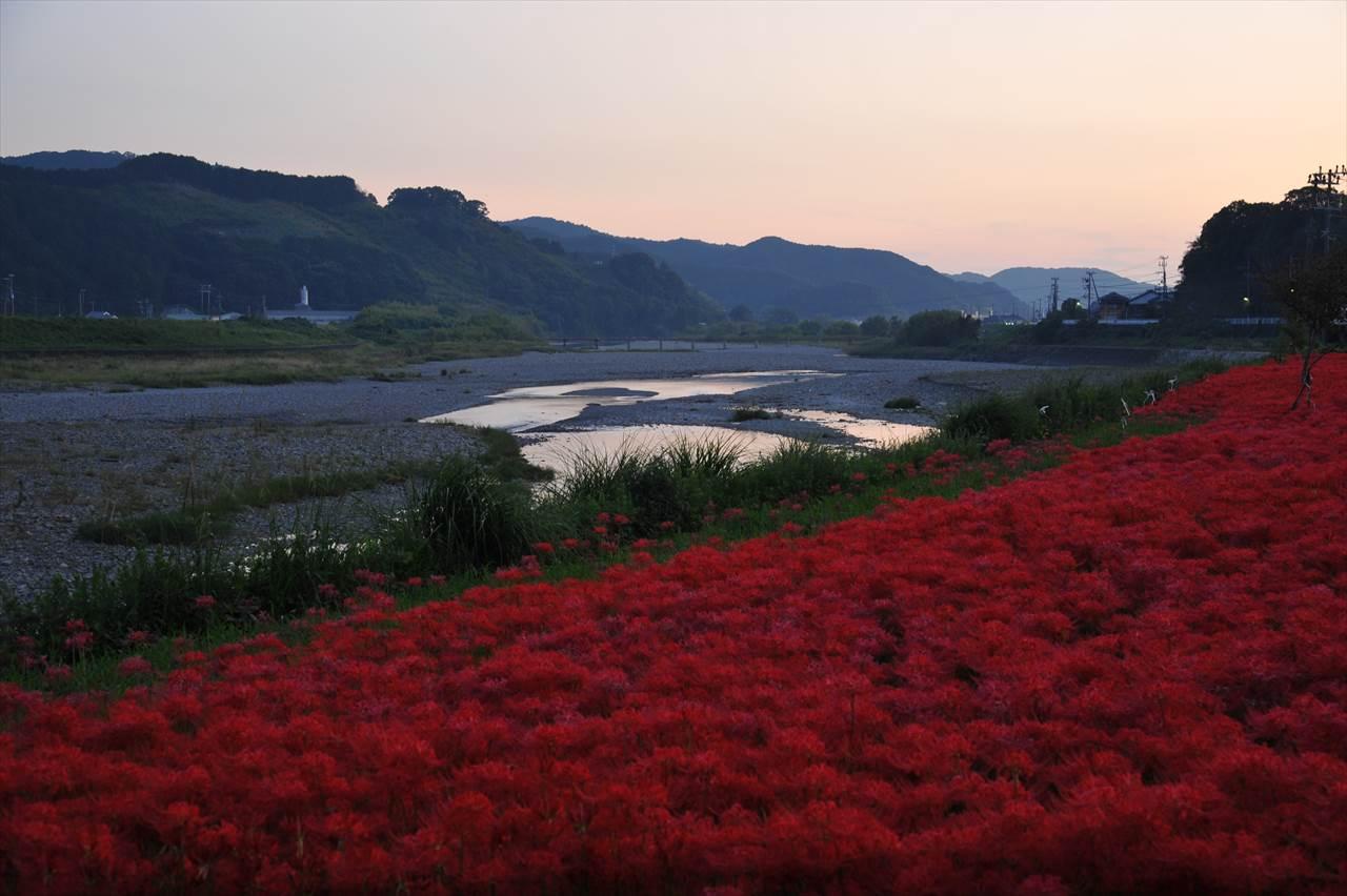 富田川の水垢離場とヒガンバナ