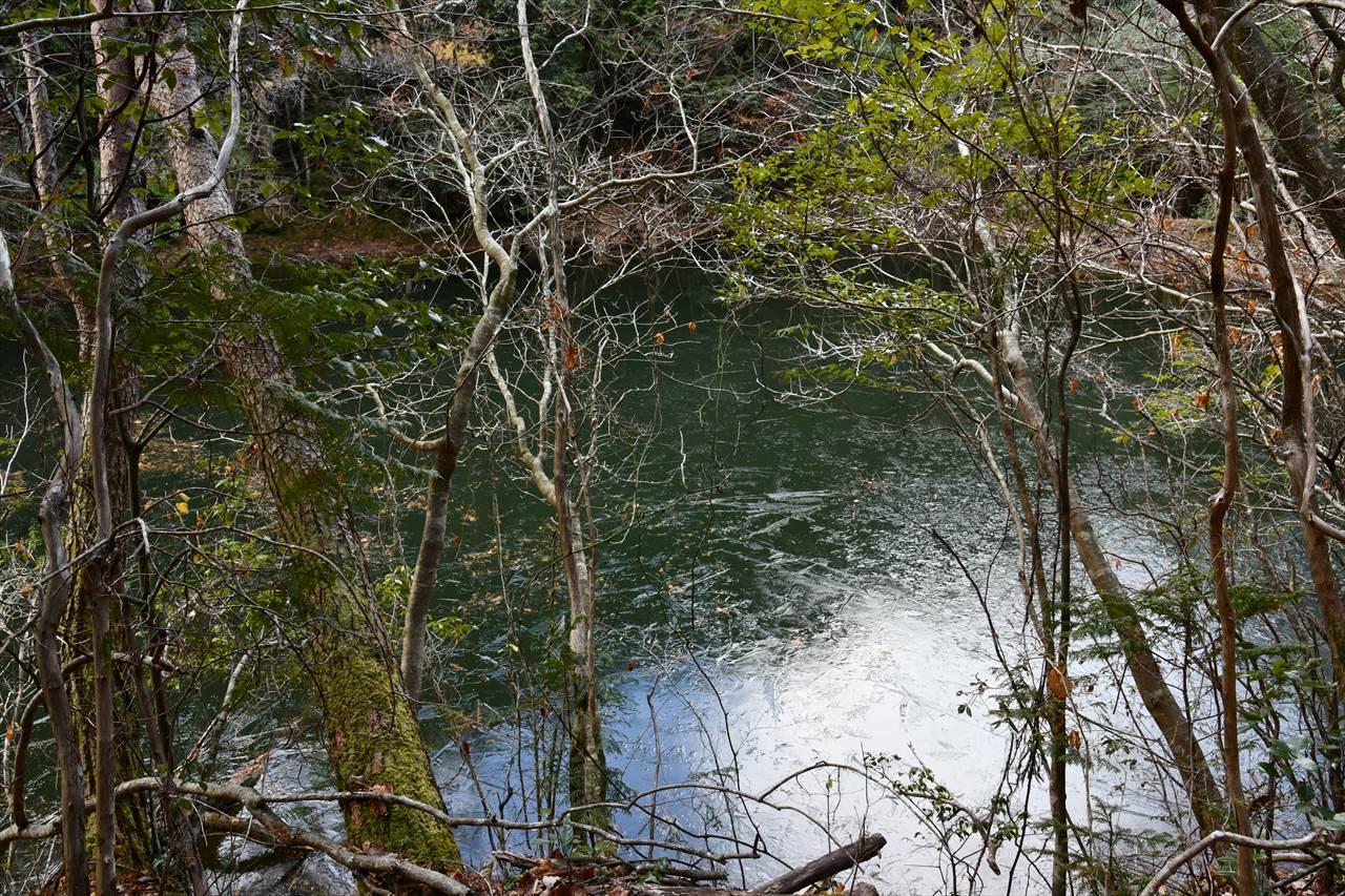凍った高原池
