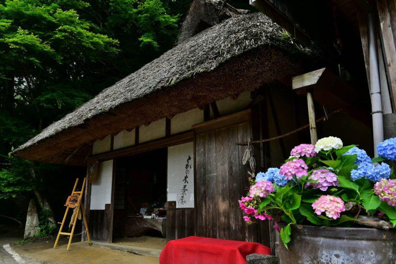 初夏のとがの木茶屋
