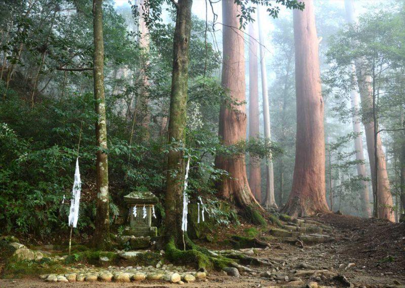朝霧の月見ケ丘神社