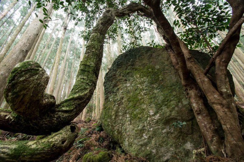 楠の久保旅籠跡の名号石
